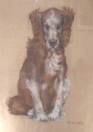 fine_art_nicolahicks_dog