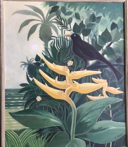 Fein Bird in Jungle (3)
