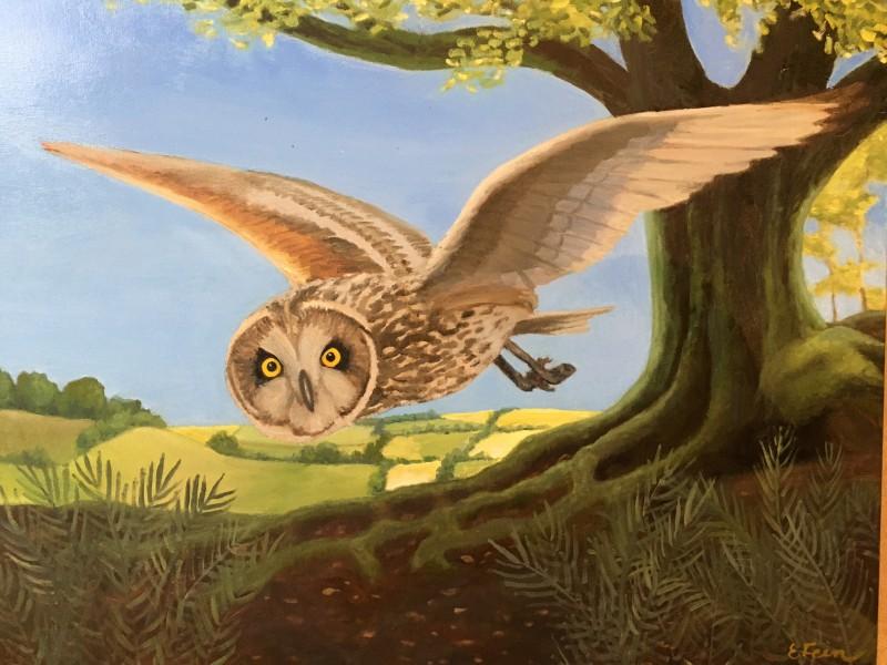 Eleanor Fein Owl Hunting